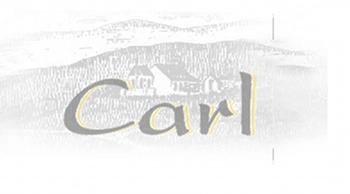 EARL Carl André